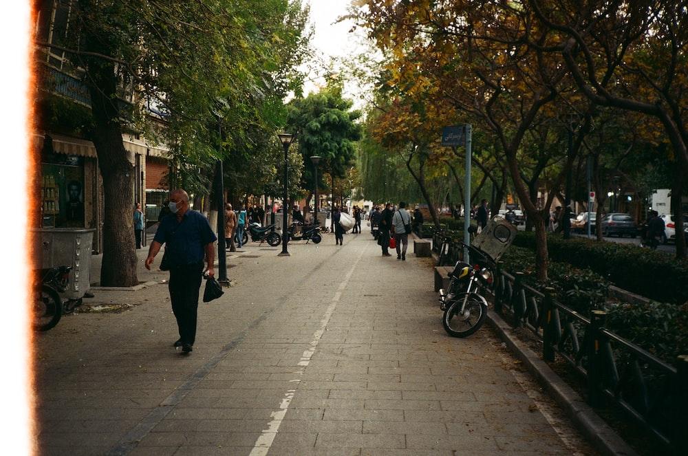 people walking on sidewalk near green trees during daytime