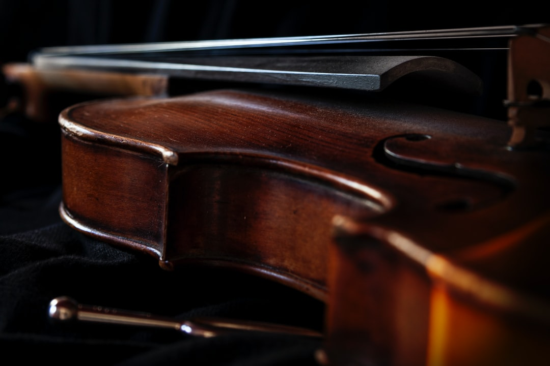 INTERMEDIATE'S GUIDE TO BUYING A CELLO – DOLCE VIOLINS
