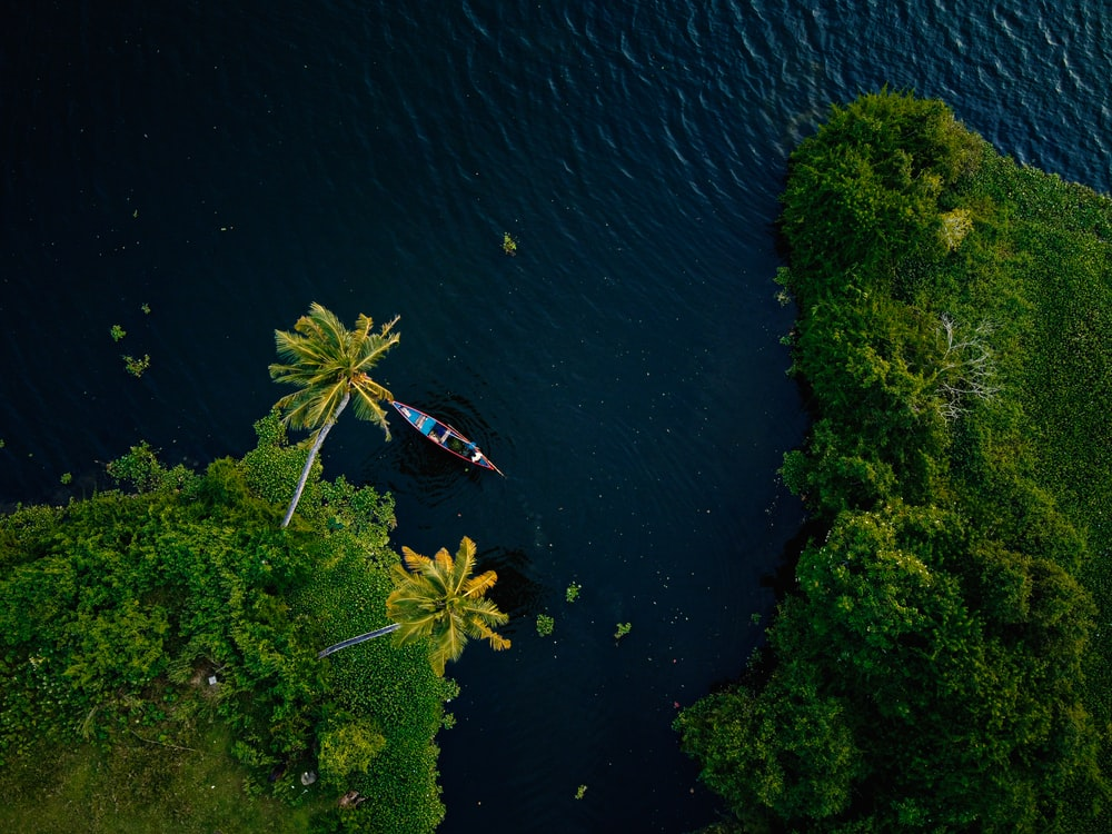 Kerala, where our graduate Mayank took the CertTESOL course.