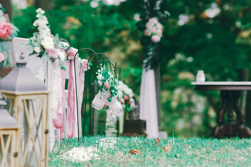 white and pink flowers on brown wooden fence