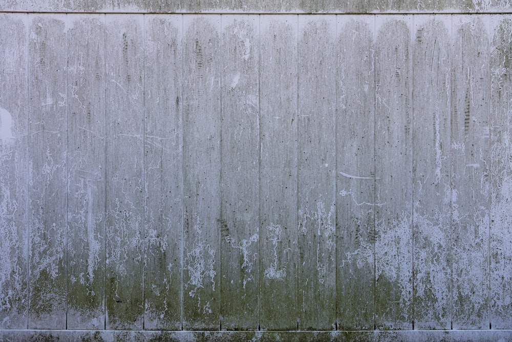 gray wooden fence during daytime
