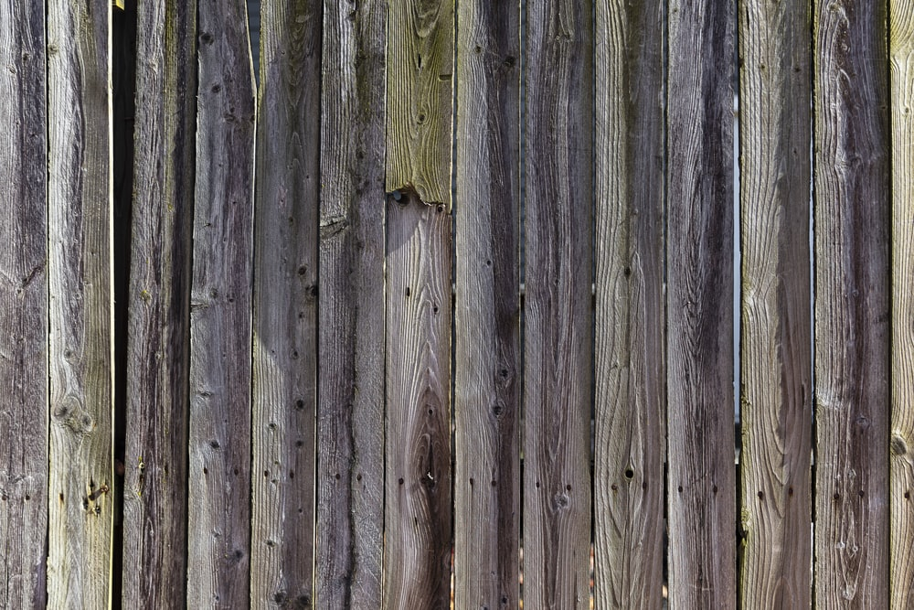 gray wooden fence with white paint
