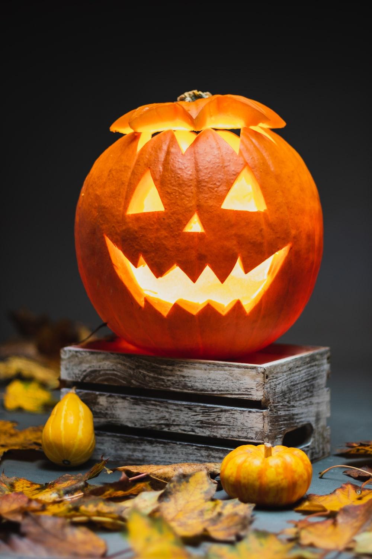 Halloween Pumpkin Pictures | Download Free Images on Unsplash