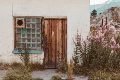 brown wooden door on white concrete wall kazakhstan zoom background