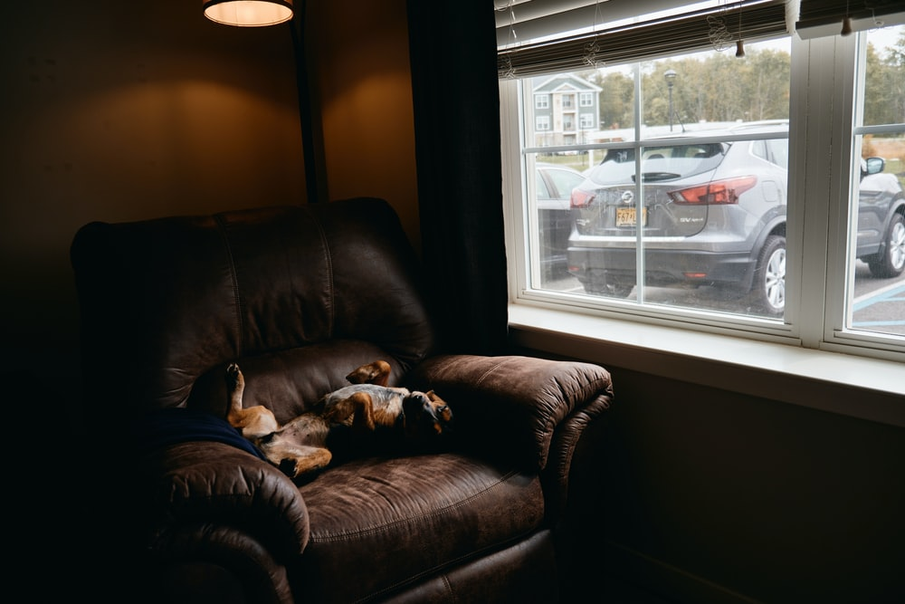 brown leather couch beside white framed glass window