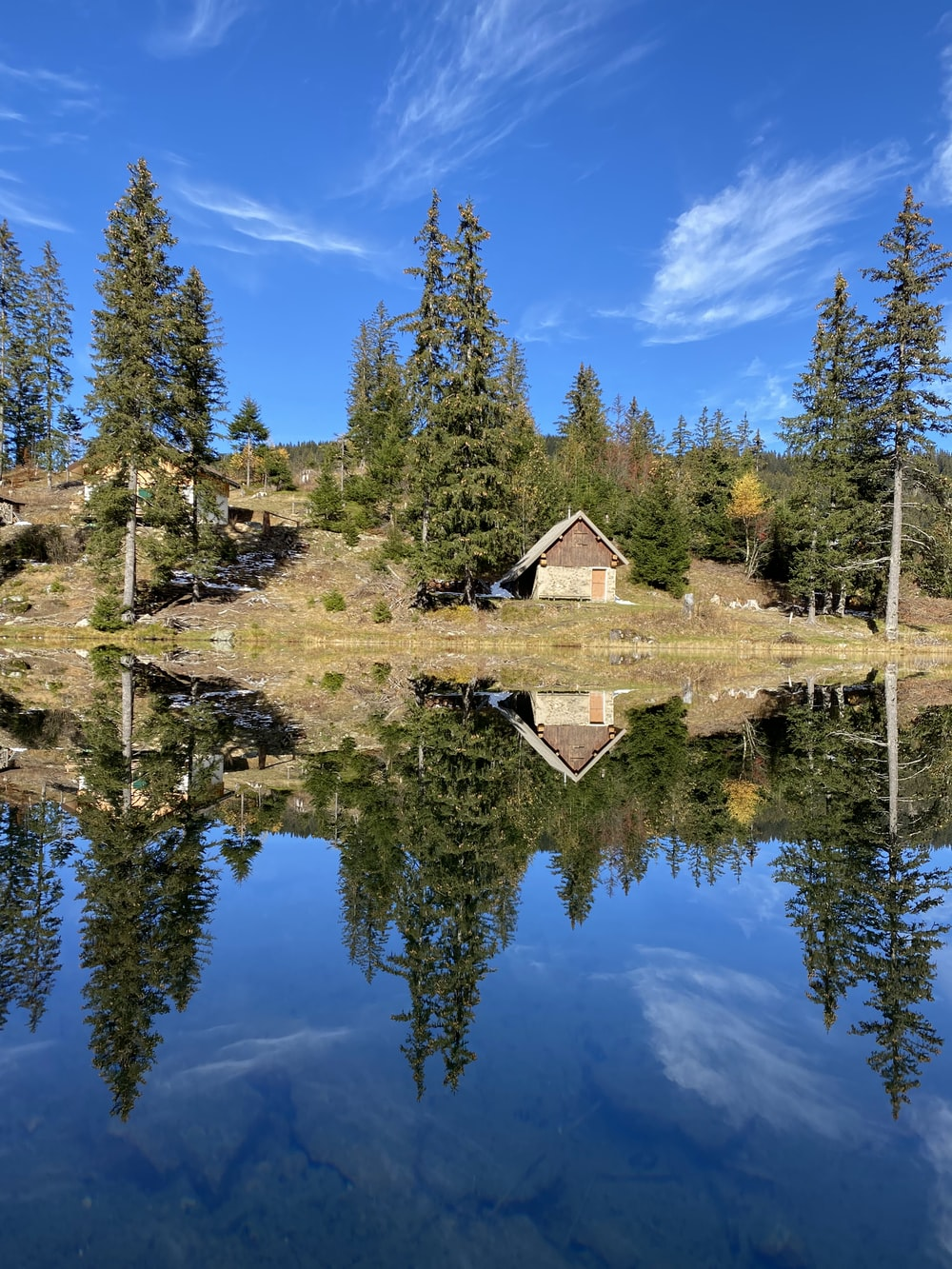 brown wooden house near green trees and lake under blue sky during daytime