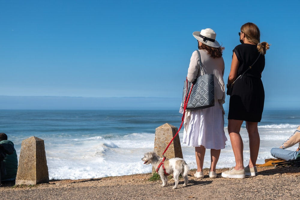 woman in black tank top standing beside white short coated dog on beach during daytime