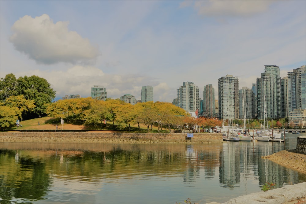 white and brown buildings near body of water during daytime
