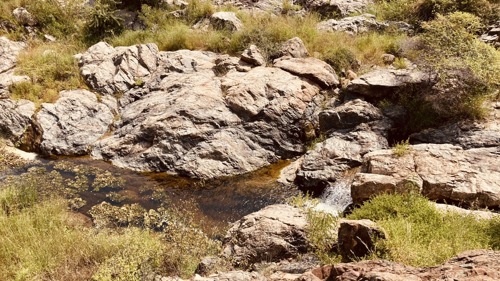 brown rocky river with green grass