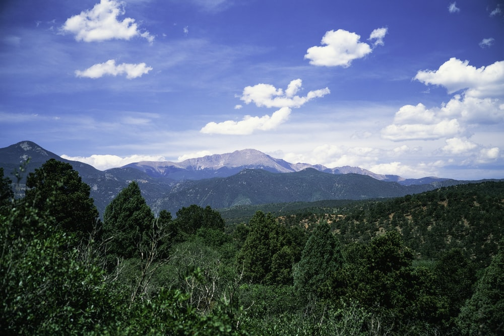 green trees and mountains under blue sky during daytime