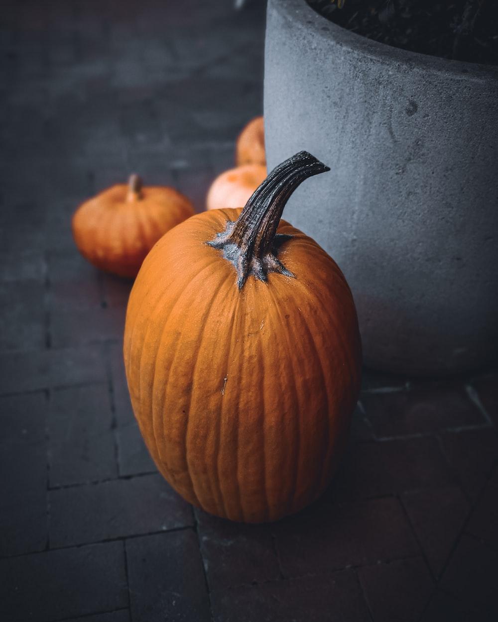 orange pumpkin on brown brick floor