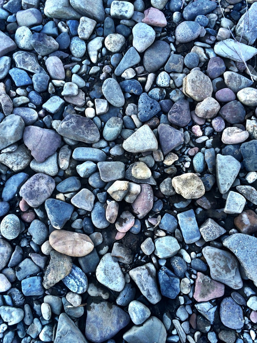 brown and gray stones on gray stones