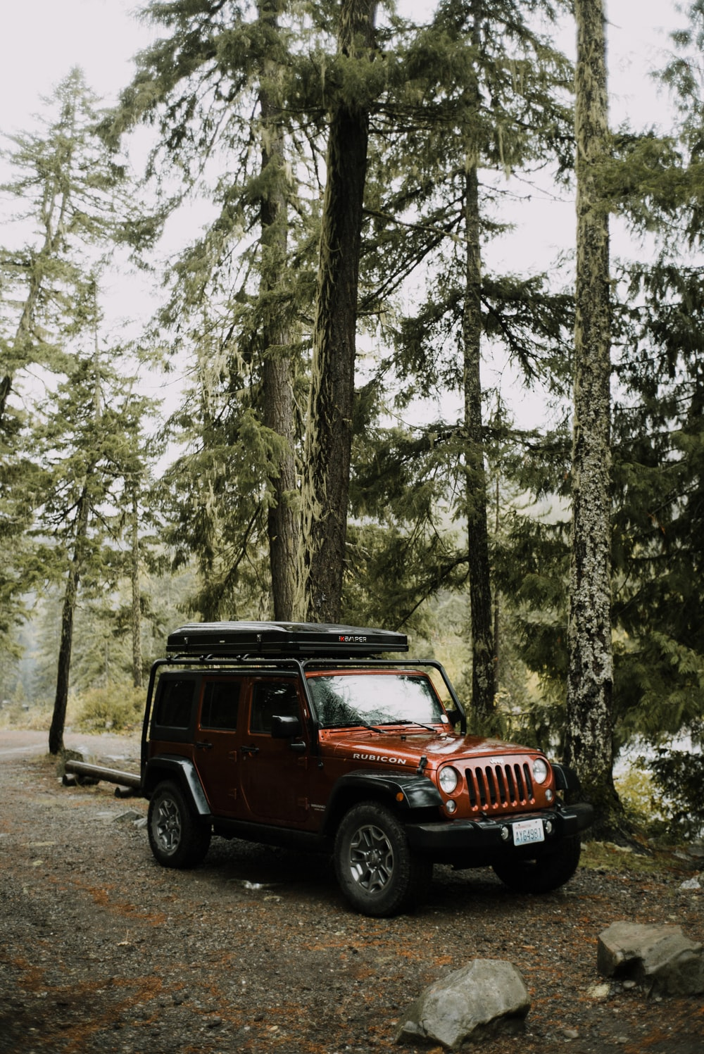 black jeep wrangler in the woods