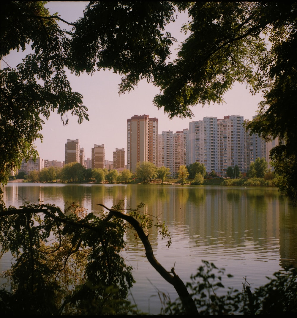 body of water near trees and high rise buildings during daytime