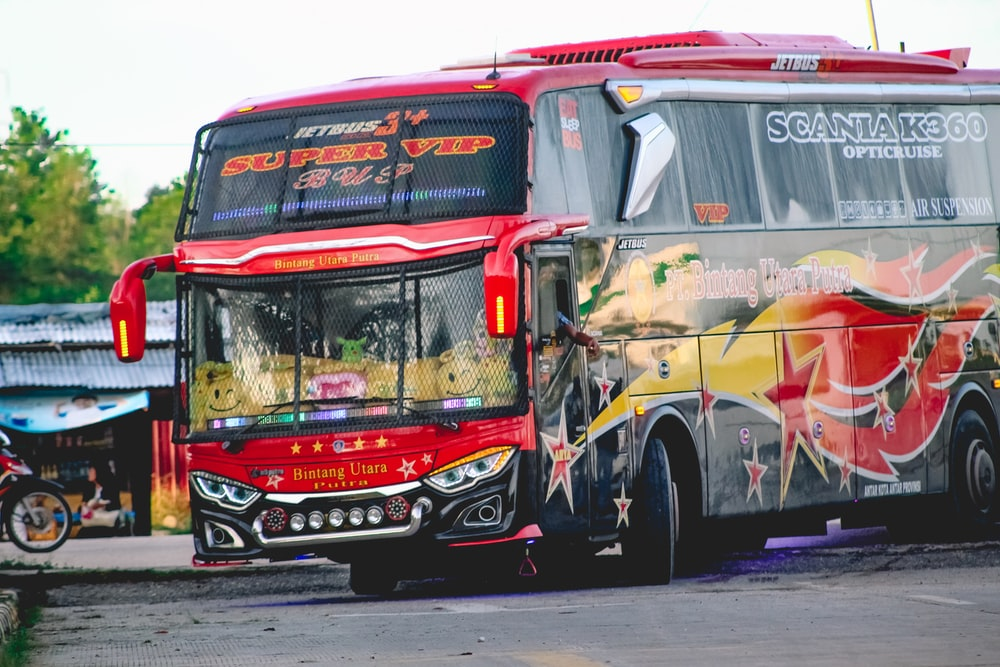red and yellow bus on road during daytime