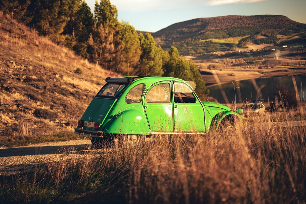 green volkswagen beetle on brown grass field during daytime