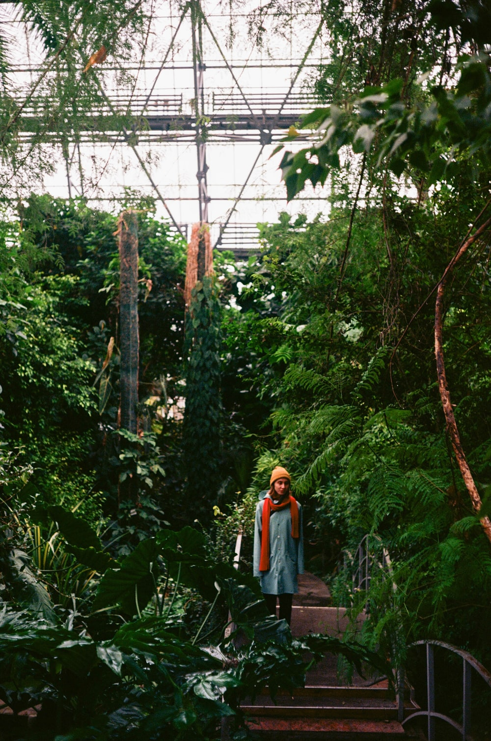 woman in orange jacket standing on forest during daytime