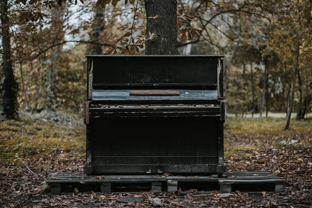 black upright piano on green grass field during daytime