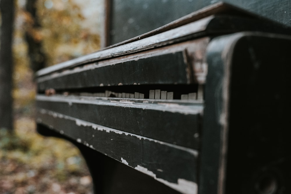 black wooden bench near brown leaves during daytime