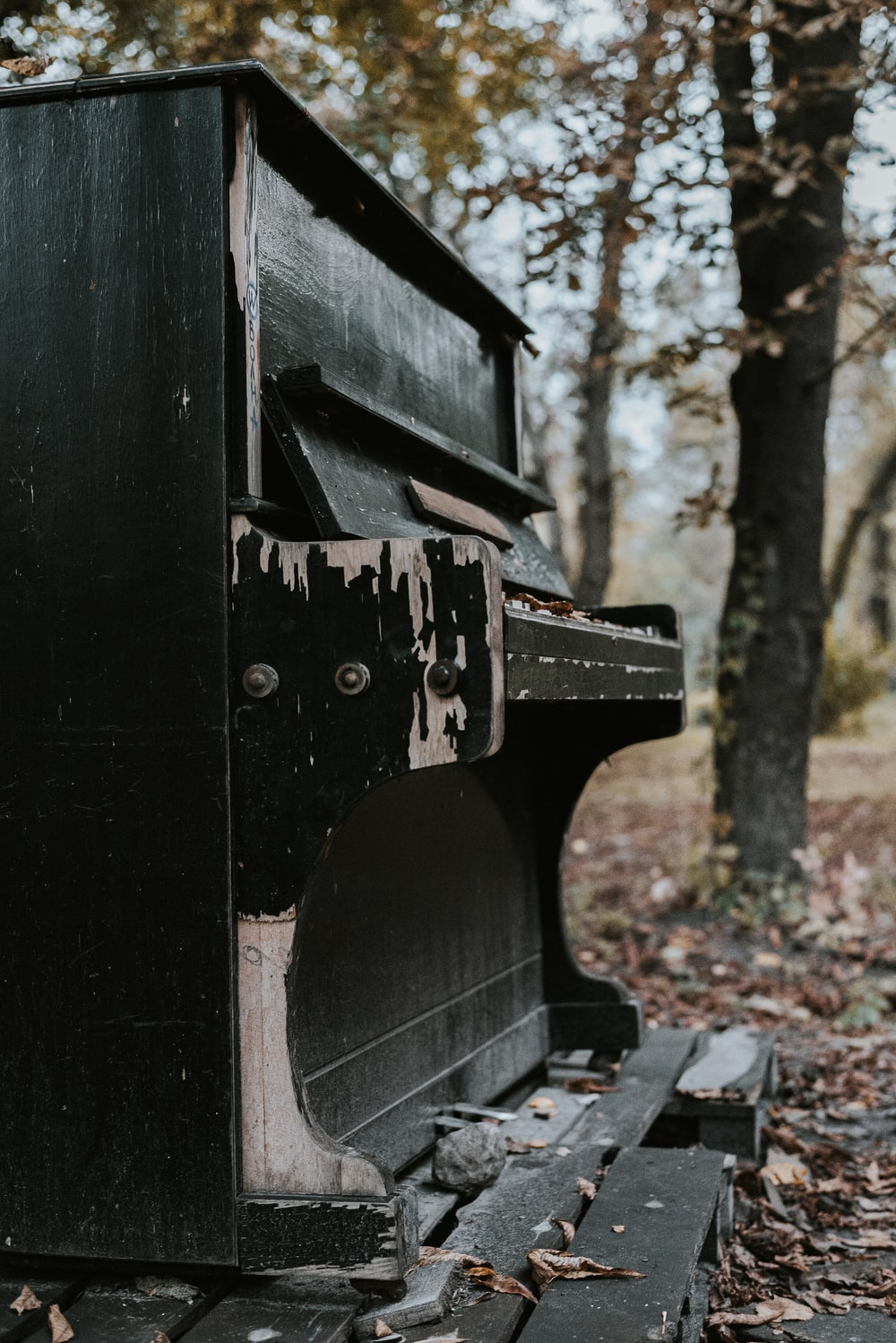 black wooden bench near trees during daytime