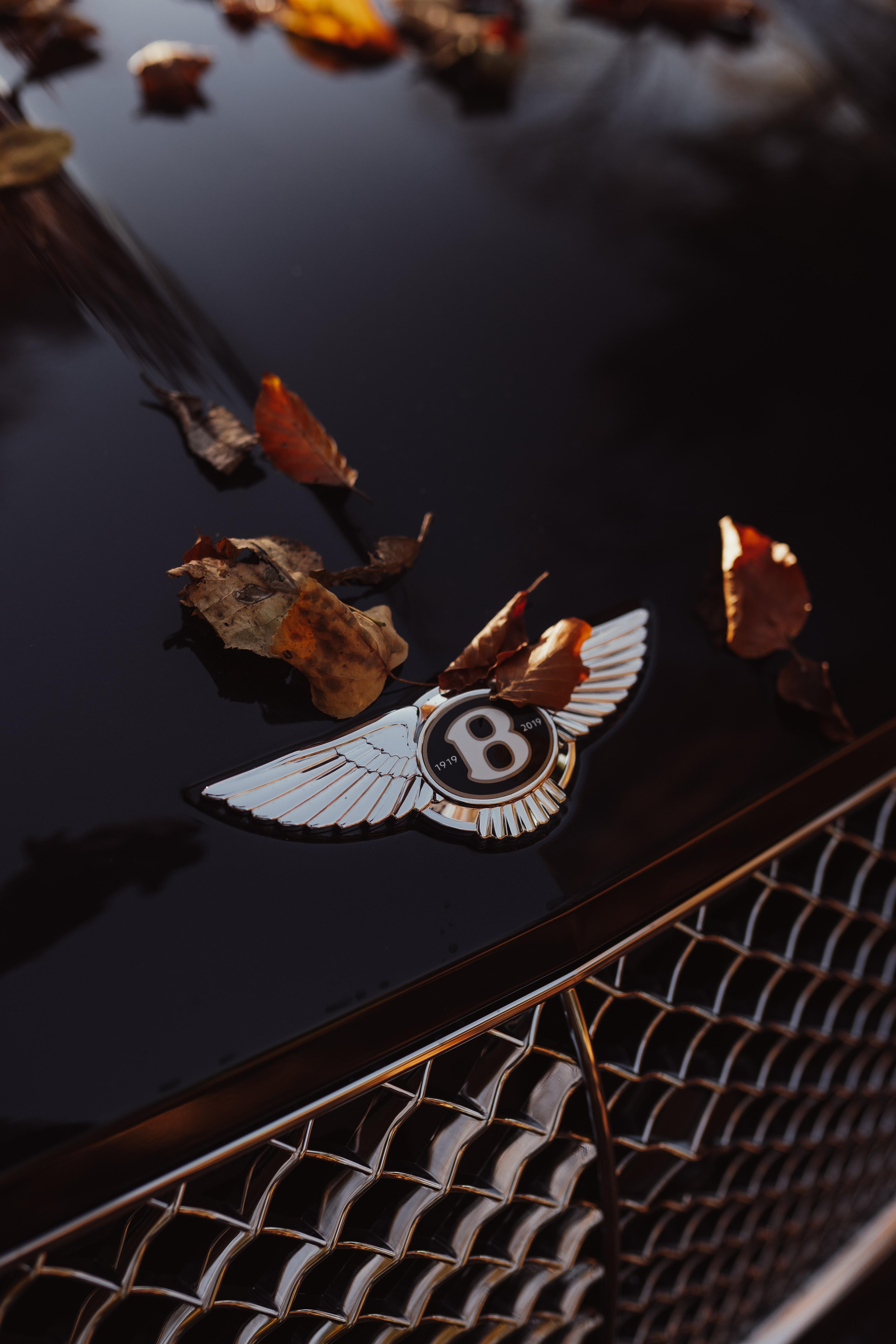 New Bentley Continental GT V8 Autumn Shooting