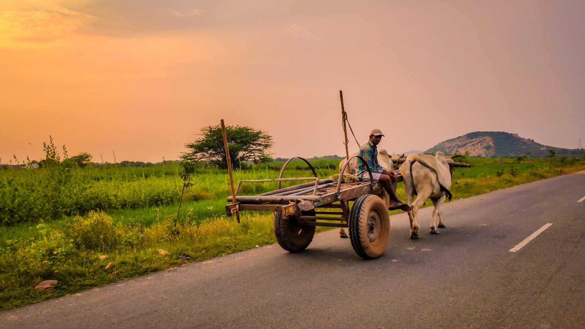 सराहनीय प्रयास: भारत के कई राज्यों के 75 गांवों में स्वास्थ्य सेवा देंगे AAPI