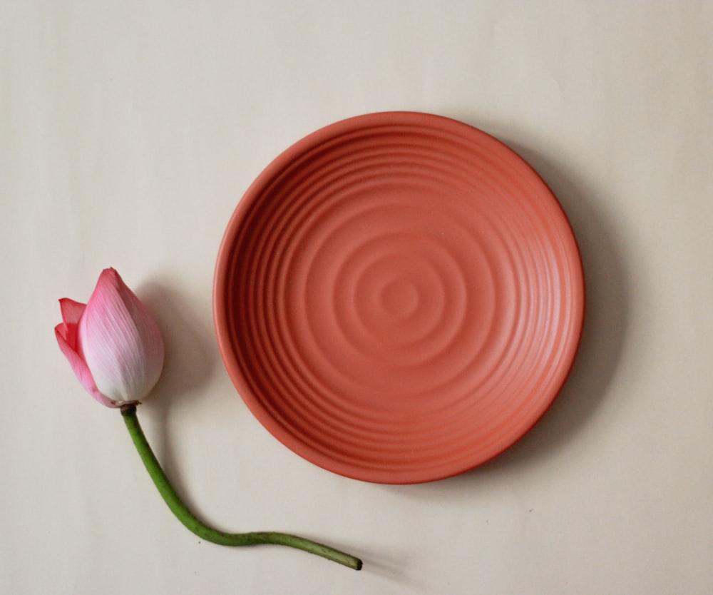 丸い赤い丸いプレートの横にあるピンクと白の花のつぼみ