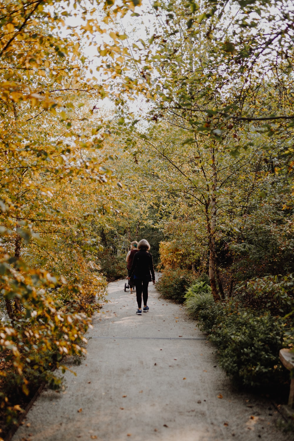 man and woman walking on gray concrete road between green and yellow trees during daytime