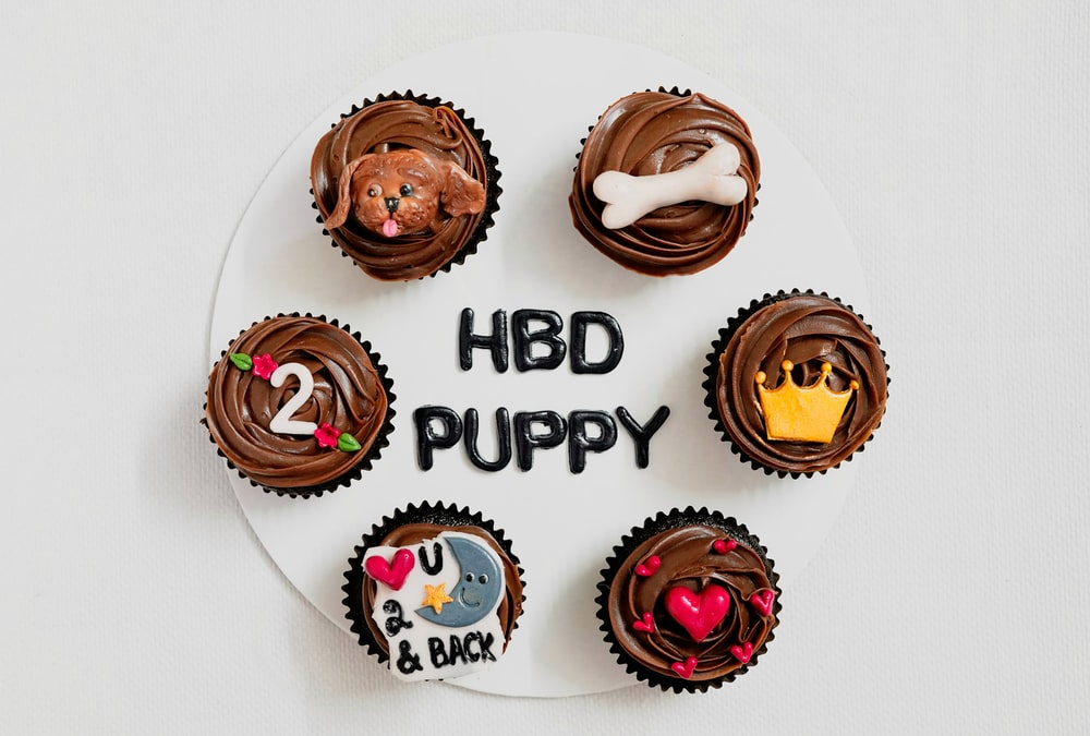 happy birthday to you with chocolate and strawberry cupcakes