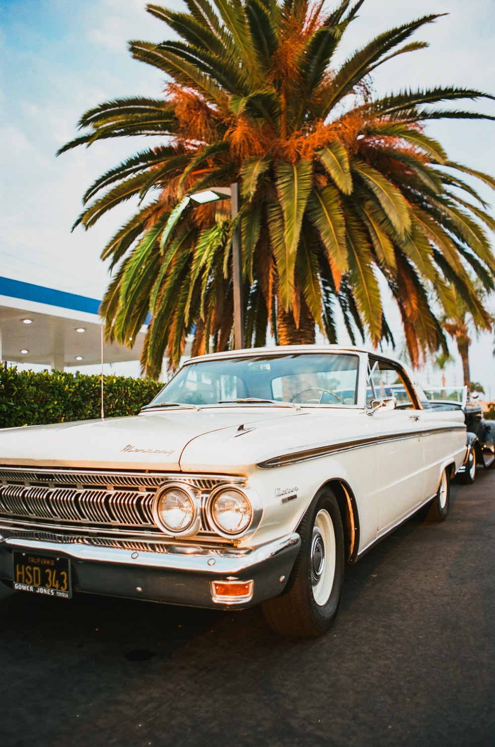 white and blue classic car parked near palm trees during daytime