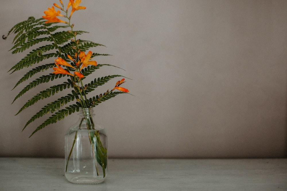 orange flowers in clear glass vase