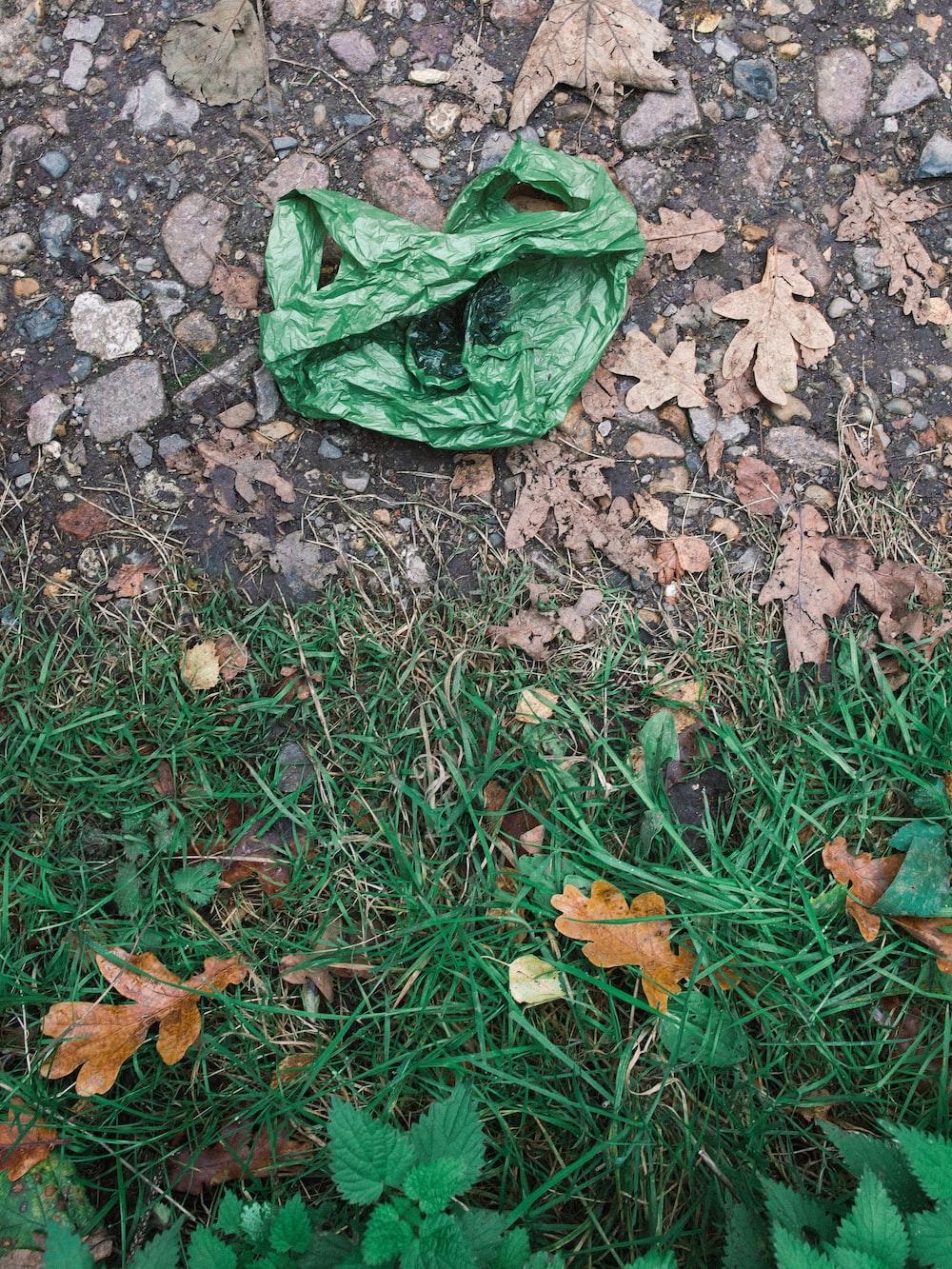 green plastic bag on brown dried leaves