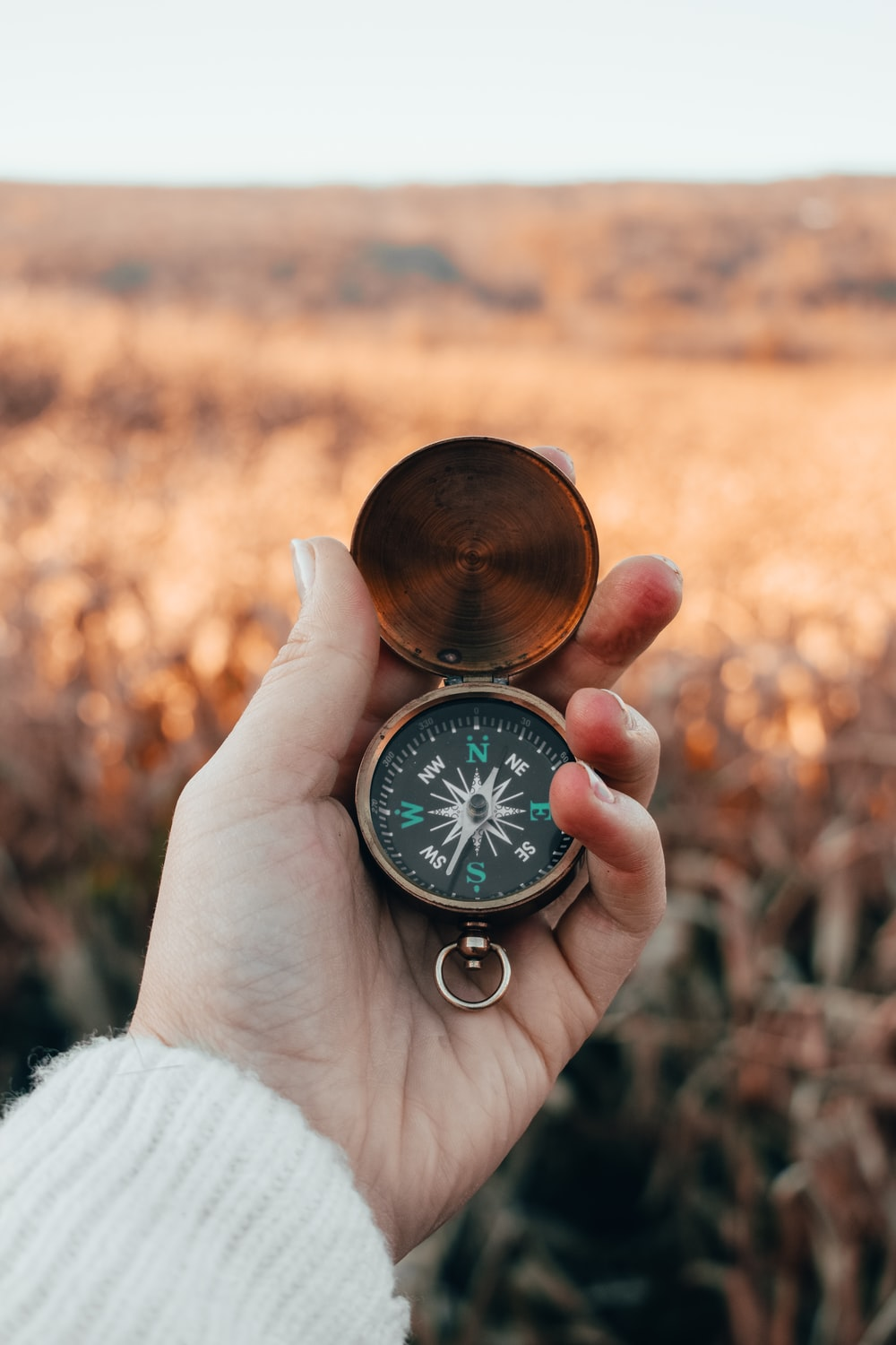 person holding green and gold compass