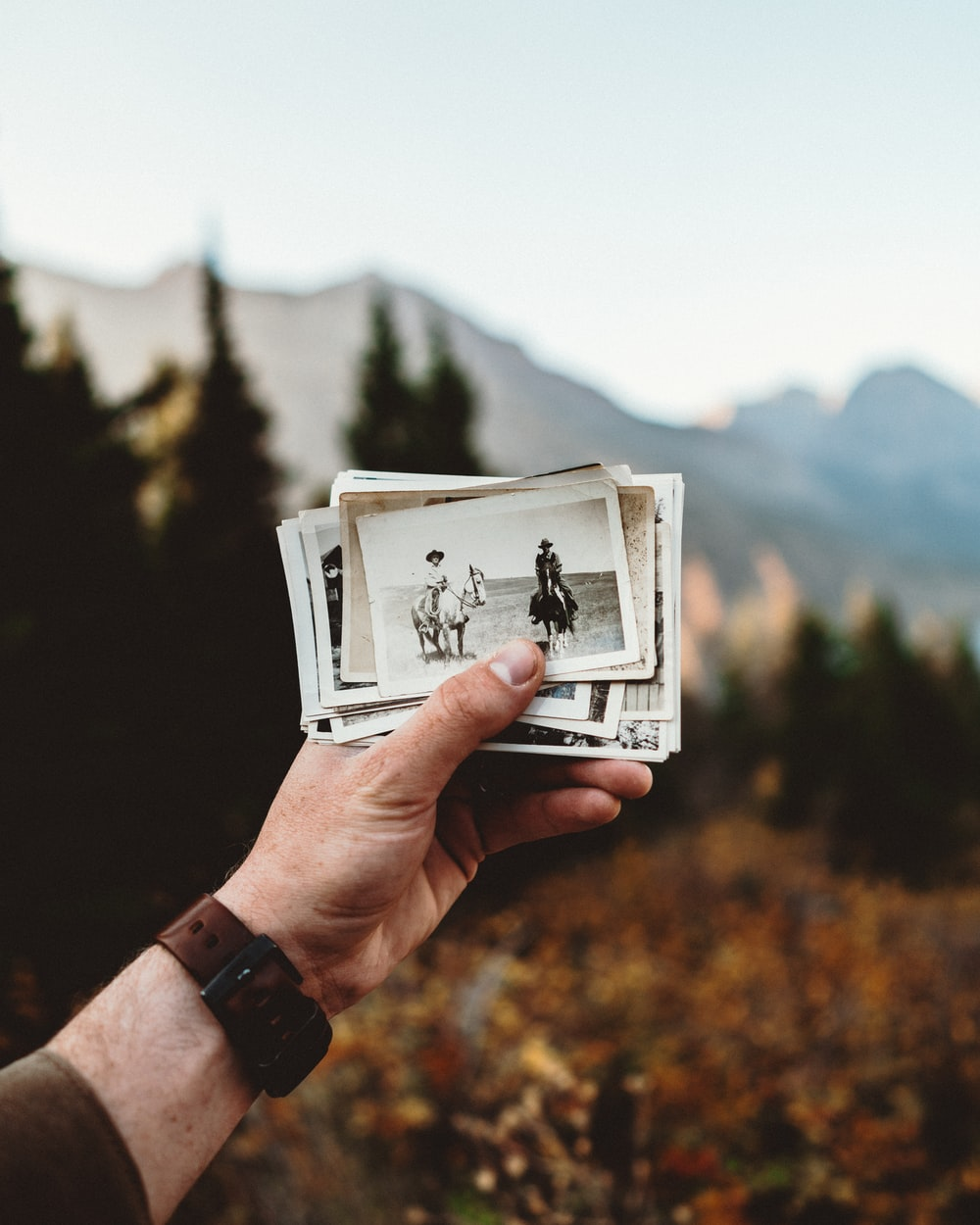 person holding white photo frame