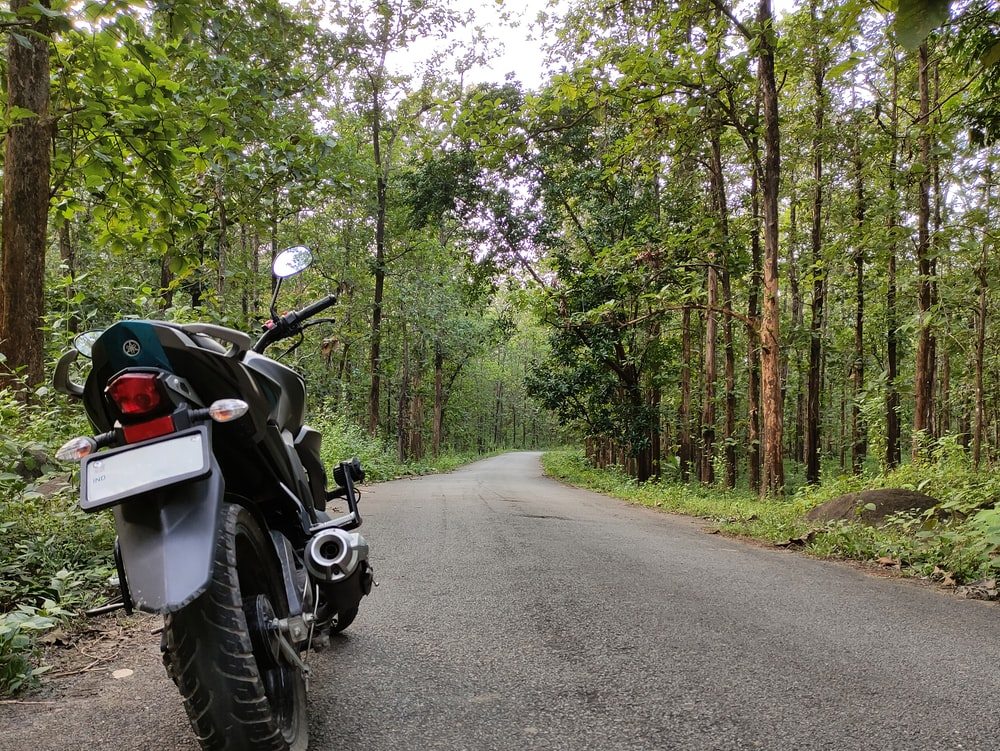 black motorcycle on road between trees during daytime