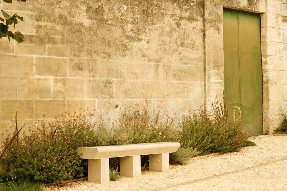 white wooden bench beside green grass