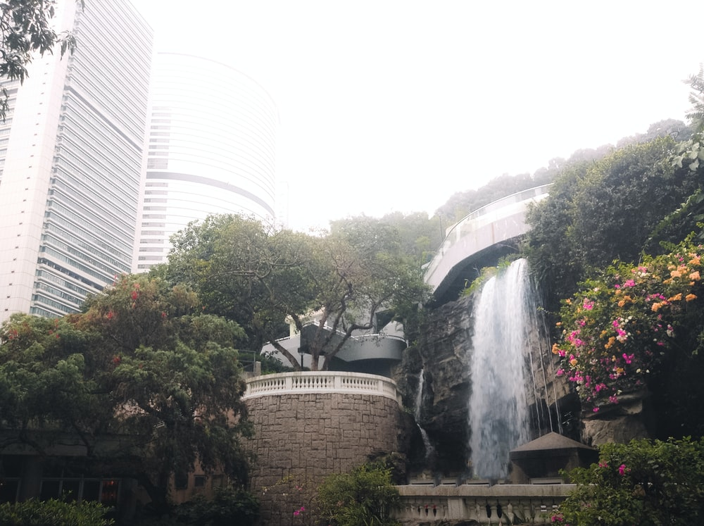 green trees near water fountain