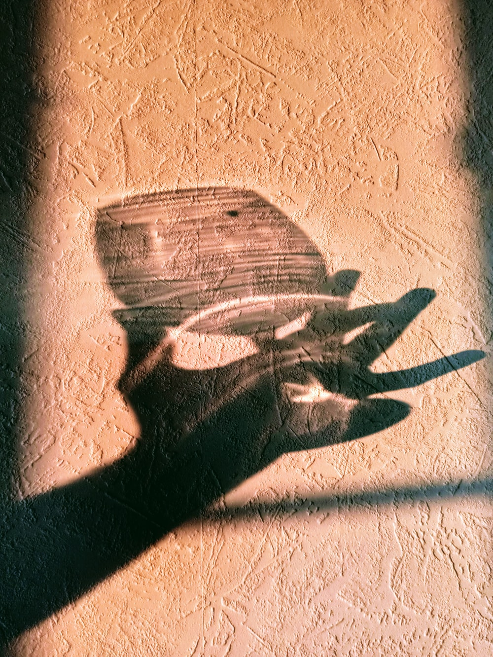 shadow of person holding clear glass cup
