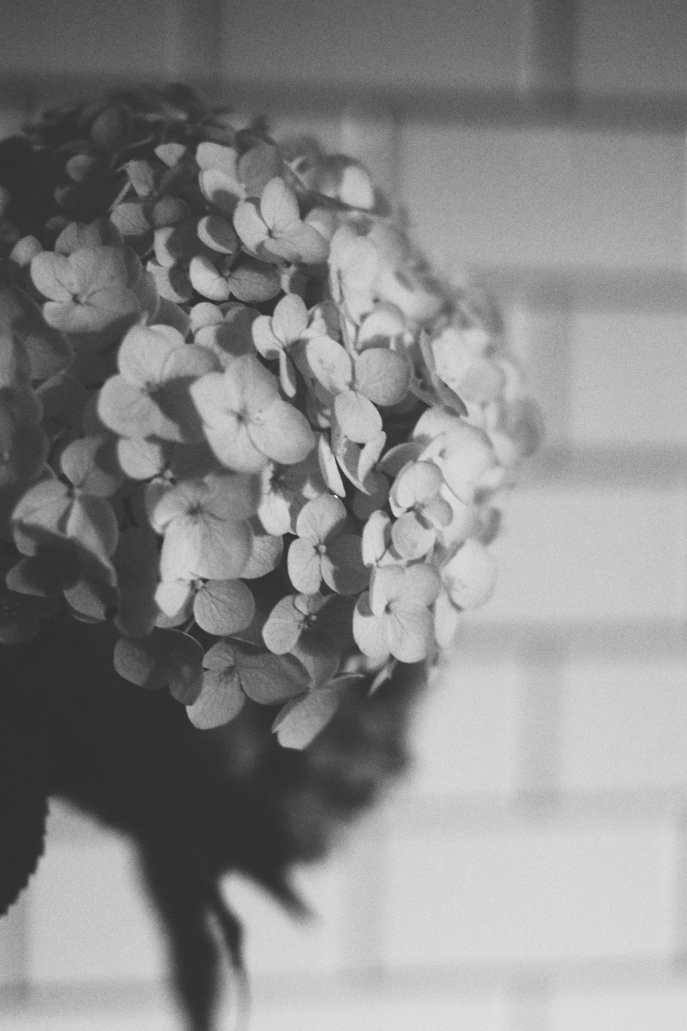 greyscale photo of flower bouquet