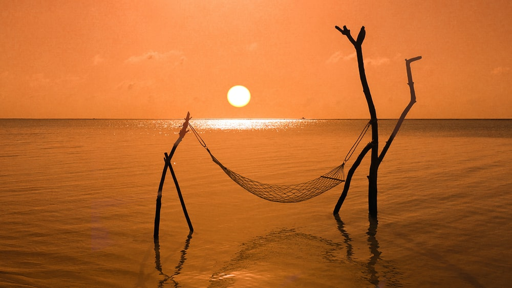 brown rope on body of water during sunset