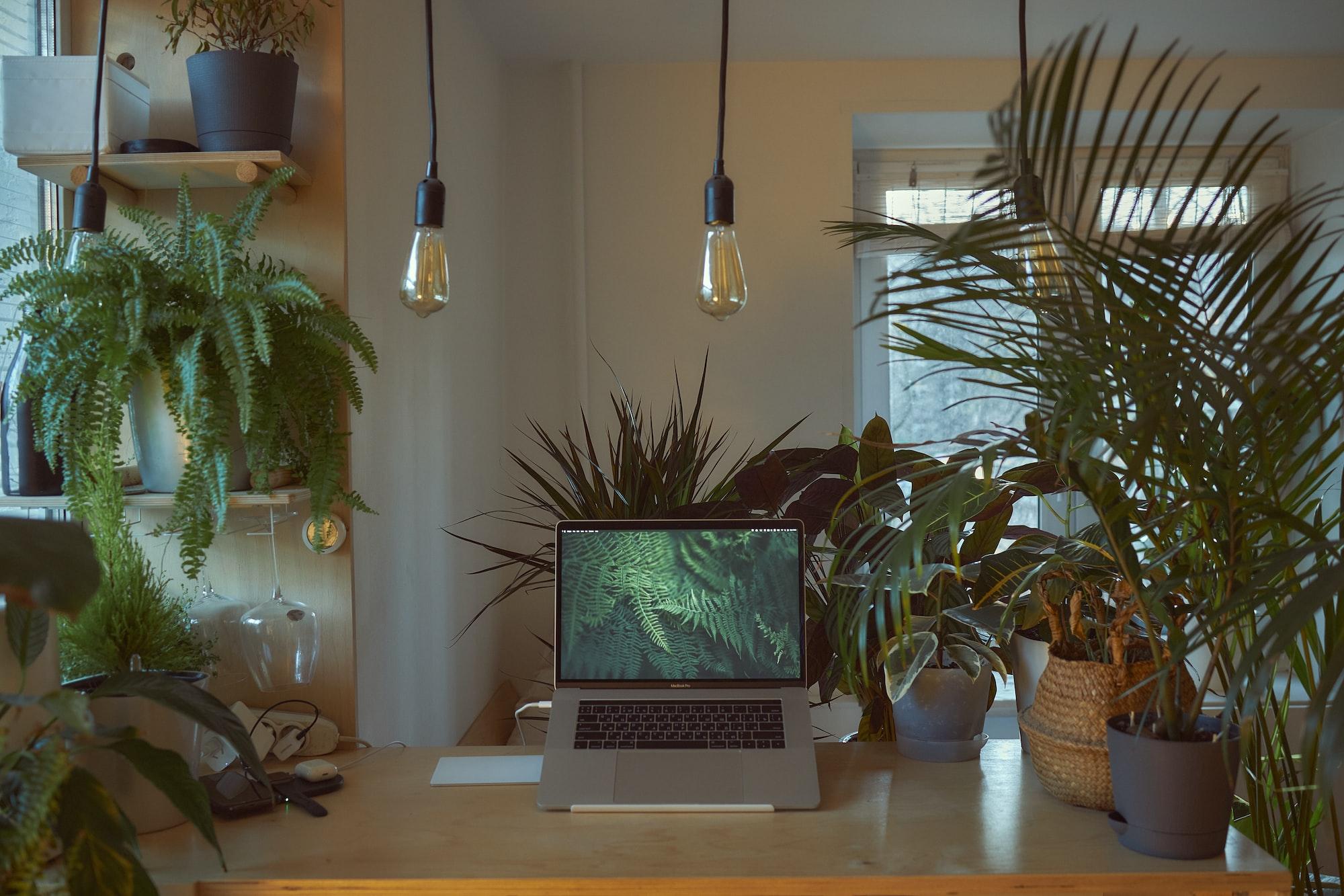Comment créer une routine pour ses plantes avec Apple Shortcuts