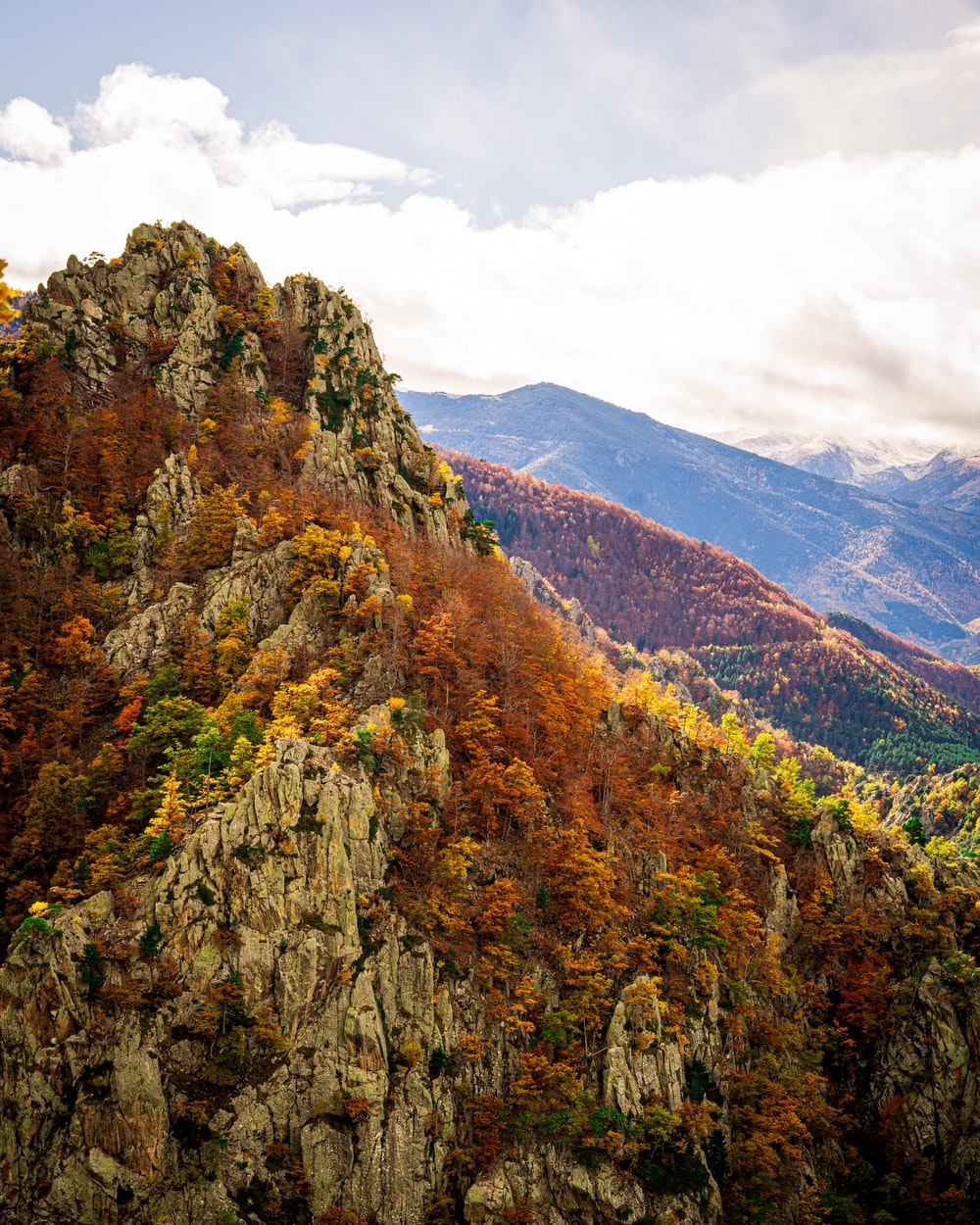 green and brown trees on mountain under white clouds during daytime