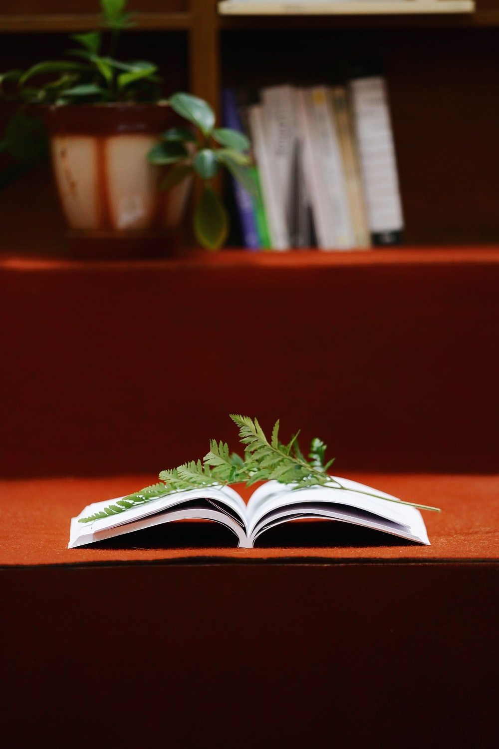 green and white book on brown wooden table