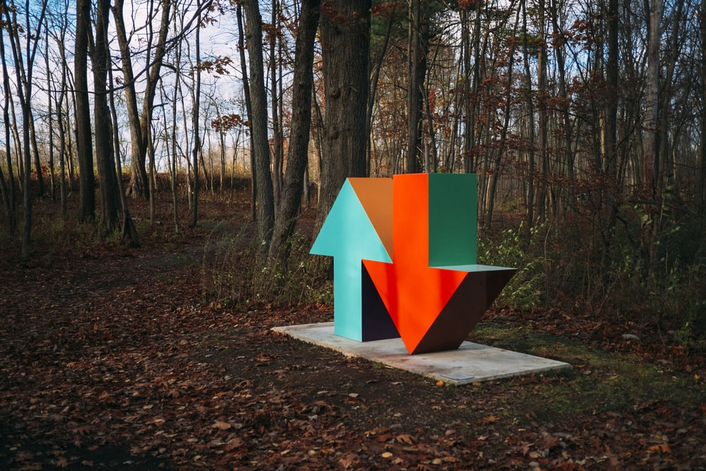 red and blue arrow sign surrounded by brown trees