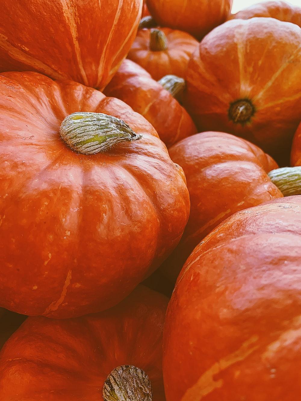 orange round fruit in close up photography