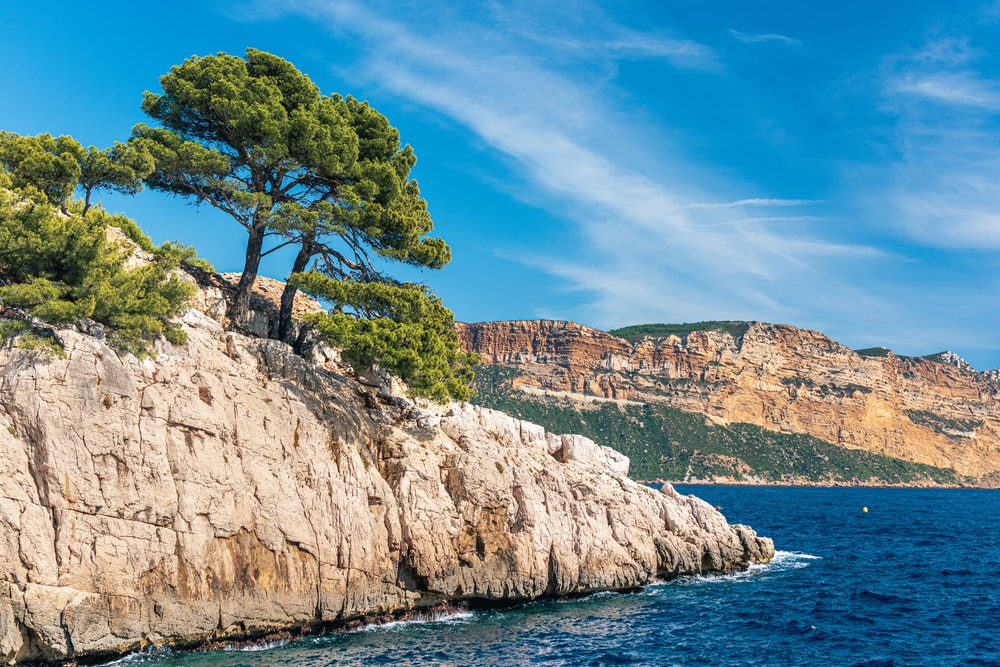 green trees on brown rocky mountain beside blue sea under blue sky during daytime
