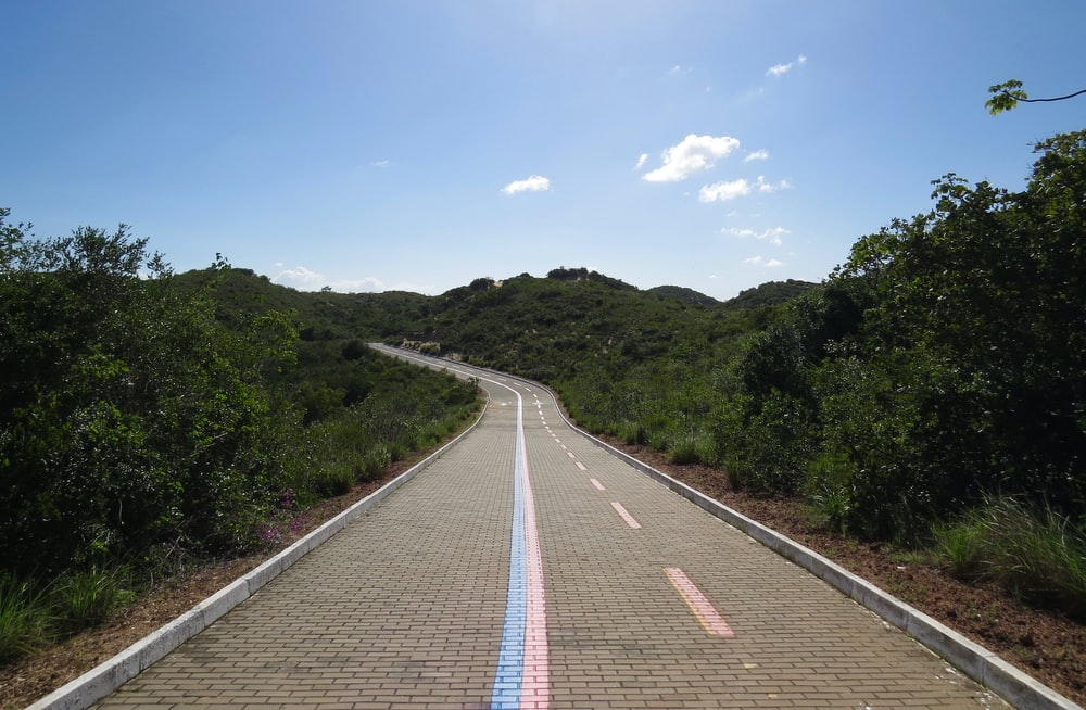 gray concrete road between green trees under blue sky during daytime