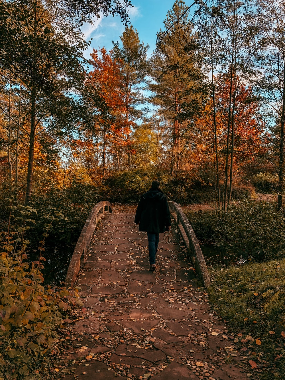 person in black coat walking on brown pathway surrounded by trees during daytime