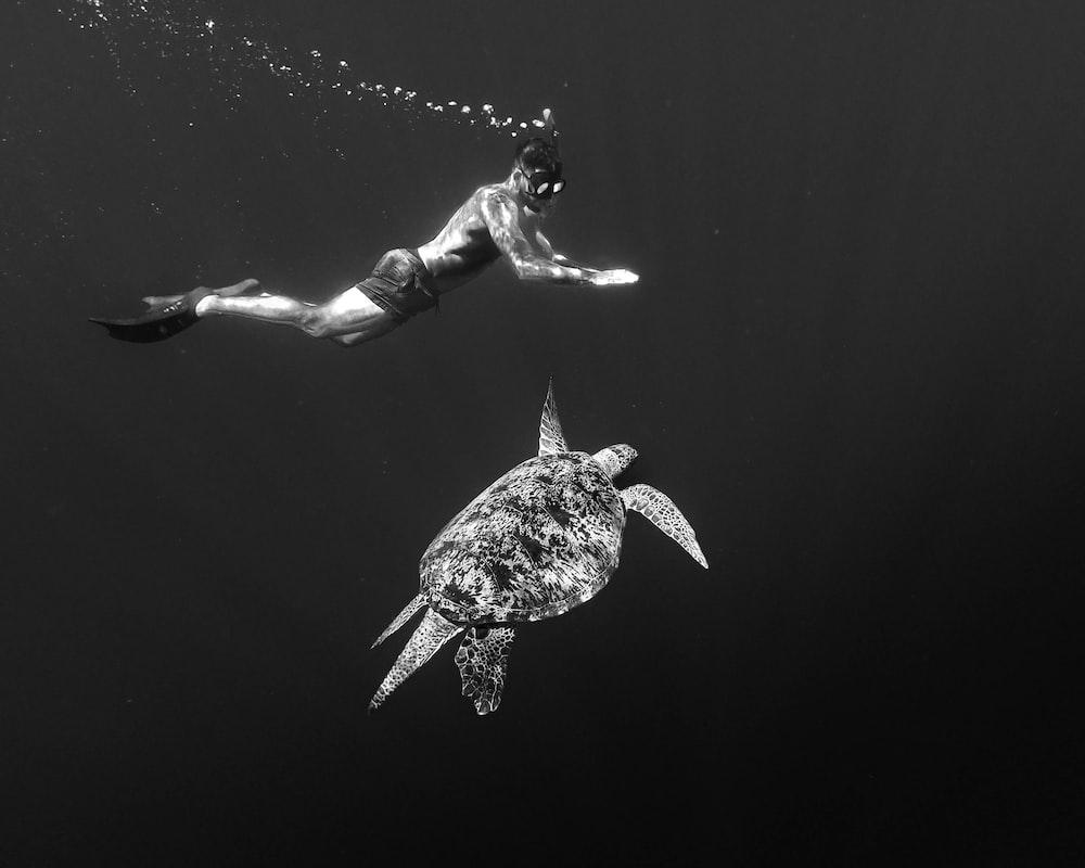 woman in white and black bikini swimming in water