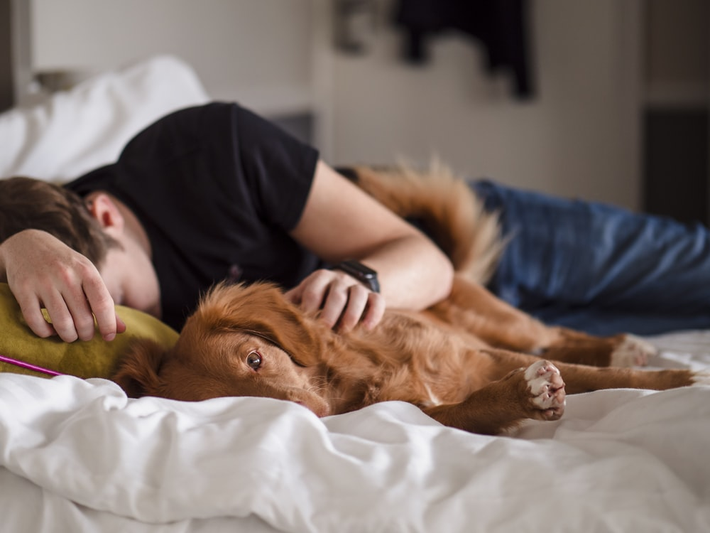 person in black shirt lying on bed
